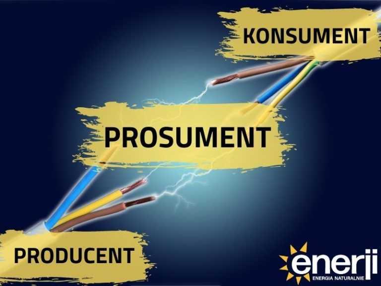 Prosument = Producent+Konsument