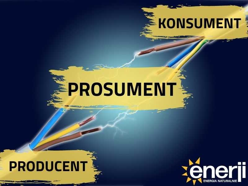 Prosument = Producent+Konsument