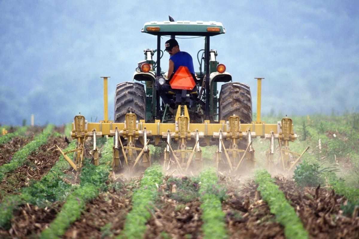 Fotowoltaika dla rolników - ulga inwestycyjna